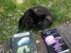 tonys cat